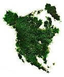 Moss Shaped as North America Stock Photo - Premium Rights-Managed, Artist: Natasha V, Code: 700-03290135