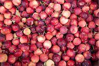 Organic Apples, Penticton, Okanagan Valley, British Columbia, Canada Stock Photo - Premium Royalty-Freenull, Code: 600-03294795