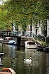 View of Canal, Amsterdam, Netherlands Stock Photo - Premium Rights-Managed, Artist: Atli Mar Hafsteinsson, Code: 700-03294864