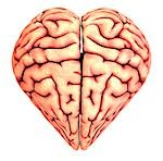 Heart-shaped brain, conceptual artwork. Stock Photo - Premium Royalty-Free, Artist: Stellar Stock, Code: 679-03298752