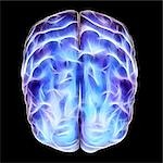 Electrical activity in the brain, artwork. Stock Photo - Premium Royalty-Free, Artist: Stellar Stock, Code: 679-03298754