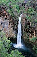 queensland - Australia, Queensland, Waterfall in rainforest Stock Photo - Premium Royalty-Freenull, Code: 693-03306407