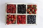Assorted berry fruits in container, view from above Stock Photo - Premium Royalty-Free, Artist: DLeonis                       , Code: 693-03310580