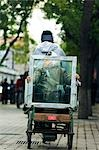 China,Beijing. A woman transporting a window pane; in a local neighbourhood Hutong. Stock Photo - Premium Rights-Managed, Artist: AWL Images, Code: 862-03351338
