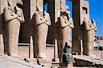 Headless statues of Ramses II line the courtyard at the entrance to the Ramesseum,Luxor. Stock Photo - Premium Rights-Managed, Artist: AWL Images, Code: 862-03352770