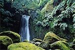 Salto do Prego waterfall near Faial da Terra on the island of Sao Miguel,Azores Stock Photo - Premium Rights-Managed, Artist: AWL Images, Code: 862-03354428