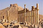 An Arab fortress stands over the spectacular ruined city of Palmyra. The city was at its height in the 3rd century AD but fell into decline when the Romans captured Queen Zenobia after she declared independence from Rome in 271. Stock Photo - Premium Rights-Managed, Artist: AWL Images, Code: 862-03354872