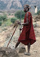A Maasai warrior with his hair styled in a most unusual way. His long braids have been wrapped tightly in leather,decorated with beads and tied in an arch over his head. A colobus monkey tail sets this singular hairstyle apart from the more traditional warrior styles. Stock Photo - Premium Rights-Managednull, Code: 862-03355139