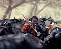 A young Maasai herdsboy drives his family's herds to grazing grounds close to the Sanjan River in Northern Tanzania. Stock Photo - Premium Rights-Managednull, Code: 862-03355151
