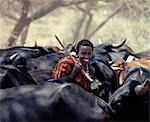 A young Maasai herdsboy drives his family's herds to grazing grounds close to the Sanjan River in Northern Tanzania. Stock Photo - Premium Rights-Managed, Artist: AWL Images, Code: 862-03355151