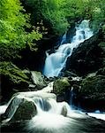 Waterfall in Killarney National Park, Ireland Stock Photo - Premium Rights-Managed, Artist: IIC, Code: 832-03358660