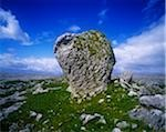 Rock formations on the landscape, The Burren, Republic Of Ireland Stock Photo - Premium Rights-Managed, Artist: IIC, Code: 832-03358690
