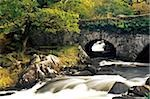 Galway's Bridge, Killarney National Park, County Kerry, Ireland; Water flowing under bridge Stock Photo - Premium Rights-Managed, Artist: IIC, Code: 832-03359145