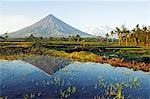 Philippines,Luzon Island,Bicol Province,Mount Mayon (2462m). Near perfect volcano cone with a plume of smoke and reflection in the water. Stock Photo - Premium Rights-Managed, Artist: AWL Images, Code: 862-03360773