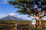Philippines,Luzon Island,Bicol Province,Mount Mayon (2462m). Near perfect volcano cone with a plume of smoke with grotto and motorcycle in a field. Stock Photo - Premium Rights-Managed, Artist: AWL Images, Code: 862-03360777
