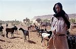 Shepherd / Goat Breeder in the desert Stock Photo - Premium Rights-Managed, Artist: AWL Images, Code: 862-03364287