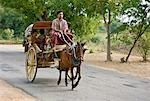 Myanmar. Burma. Bagan. A horse-drawn buggy on the road to Nyaung U market. Stock Photo - Premium Rights-Managed, Artist: AWL Images, Code: 862-03365101
