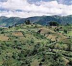 Traditional thatched houses and smallholdings of the Pokot people dot the landscape on top of the fertile Cherangani Hills,which was once a forested area. Stock Photo - Premium Rights-Managed, Artist: AWL Images, Code: 862-03366263