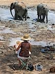 Kenya,Tsavo East,Ithumba. A wildlife artist paints young elephants enjoying a mud bath at Ithumba where the David Sheldrick Wildlife Trust runs a very important unit for orphans. Stock Photo - Premium Rights-Managed, Artist: AWL Images, Code: 862-03366918