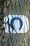 Tree trunk with horseshoe shape painted on it Stock Photo - Premium Royalty-Free, Artist: George Shelley, Code: 695-03390608