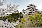 Himeji Castle, Himeji City, Hyogo, Kansai Region, Honshu, Japan Stock Photo - Premium Rights-Managed, Artist: Rudy Sulgan, Code: 700-03392407