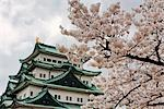 Nagoya Castle, Nagoya, Aichi Prefecture, Chubu Region, Honshu, Japan Stock Photo - Premium Rights-Managed, Artist: Rudy Sulgan, Code: 700-03392419