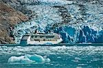 Royal Carribean cruise ship *Serenade of the Seas* in Endicott Arm near Dawes Glacier, Tracy Arm- Fords Terror National Wilderness, Southeast Alaska Stock Photo - Premium Rights-Managed, Artist: AlaskaStock, Code: 854-03392531