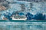 Royal Carribean cruise ship *Serenade of the Seas* in Endicott Arm near Dawes Glacier, Tracy Arm- Fords Terror National Wilderness, Southeast Alaska Stock Photo - Premium Rights-Managed, Artist: AlaskaStock, Code: 854-03392535