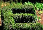 E, text, topiary Stock Photo - Premium Royalty-Free, Artist: Photocuisine, Code: 696-03396603