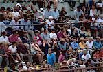 Crowd sitting in stands Stock Photo - Premium Royalty-Free, Artist: Masterfile, Code: 696-03397077