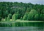 Sweden, lake Stock Photo - Premium Royalty-Free, Artist: Science Faction, Code: 696-03397093