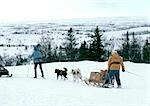 Sweden, sled-dogs pulling sled and people on cross country skis in snow