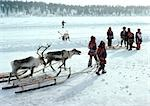Finland, Saami with sleds and reindeer in snow