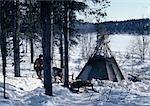 Finland, Saami with reindeer and sled next to tent in snow