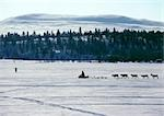 Finland, snowmobile and reindeer in silhouette Stock Photo - Premium Royalty-Free, Code: 696-03397236