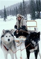 Sweden, man sitting on sled pulled by sled dogs Stock Photo - Premium Royalty-Freenull, Code: 696-03397260
