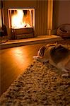 Beagle lying in front of a fire Stock Photo - Premium Rights-Managed, Artist: ableimages, Code: 822-03407074