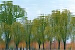 Reflection of Trees in Reflecting Pool, Washington, DC, USA Stock Photo - Premium Royalty-Free, Artist: Michael Eudenbach, Code: 600-03407230