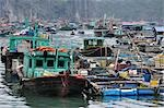 Floating Village, Cat Ba Harbour, Cat Ba Island, Vietnam Stock Photo - Premium Rights-Managed, Artist: Jochen Schlenker, Code: 700-03407677