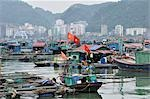 Floating Village, Cat Ba Harbour, Cat Ba Island, Vietnam Stock Photo - Premium Rights-Managed, Artist: Jochen Schlenker, Code: 700-03407678