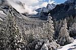 USA,California,Yosemite National Park. Fresh snow fall on El Capitan in Yosemite Valley. Stock Photo - Premium Rights-Managed, Artist: AWL Images, Code: 862-03437439