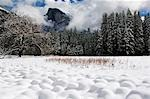 USA,California,Yosemite National Park. Fresh snow fall on Half Dome peak above unusual snow formations in Yosemite Valley. Stock Photo - Premium Rights-Managed, Artist: AWL Images, Code: 862-03437442
