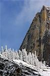 USA,California,Yosemite National Park. Fresh snow fall on Cathedral Rock in Yosemite Valley. Stock Photo - Premium Rights-Managed, Artist: AWL Images, Code: 862-03437445