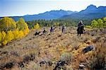 USA,Idaho. Horse Riding through the Sawtooth Mountains. Stock Photo - Premium Rights-Managed, Artist: AWL Images, Code: 862-03437554