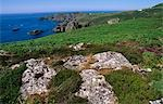 Wales. St David's Head,Pembrokeshire National Park Stock Photo - Premium Rights-Managed, Artist: AWL Images, Code: 862-03437897