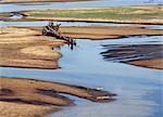Crocodiles bask on sandbanks in the South Luangwa River during the dry season when the river is low. . Stock Photo - Premium Rights-Managed, Artist: AWL Images, Code: 862-03438069