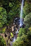 Fitzroy Falls, Morton National Park, New South Wales, Australia Stock Photo - Premium Rights-Managed, Artist: R. Ian Lloyd, Code: 700-03438111
