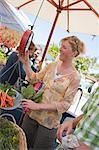 Woman Shopping at a Farmer's Market, Santa Cruz, California, USA Stock Photo - Premium Rights-Managed, Artist: Ty Milford, Code: 700-03439954