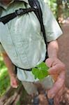 Hiker Holding a Four Leaf Clover, Near Santa Cruz, California, USA Stock Photo - Premium Rights-Managed, Artist: Ty Milford, Code: 700-03439963