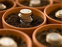 Stacks of Euro coins growing in flowerpots Stock Photo - Premium Royalty-Freenull, Code: 635-03441461